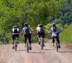 biking-group-schedule